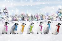 ペンギン CG