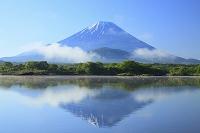 山梨県 残雪の富士山と霧晴れの精進湖の逆さ富士