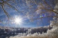 冬の聖高原