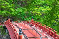 栃木県 新緑に映える神橋