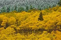 アメリカ合衆国 グレイシャー国立公園