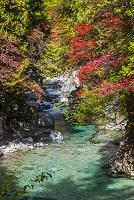 長野県 阿寺渓谷