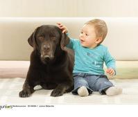 赤ちゃんとラブラドールレトリバー