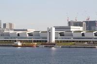 豊洲市場・漁船接岸