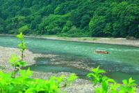 山形県 緑の最上川舟下り