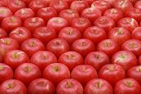 一面のリンゴ