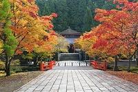 和歌山県 高野町 英霊殿とへいわばし