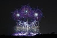 茨城県 利根川大花火大会 光のメロディー