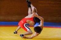 男子 レスリング