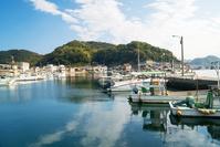 山口県 青海島 漁港