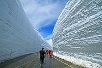 富山県 立山・雪の大谷