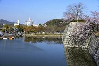 姫路 姫路城 西の丸庭園から街並みを見る