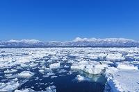 北海道 知床半島 流氷