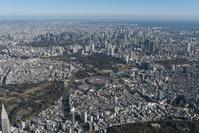 東京都 新宿区 明治神宮外苑周辺
