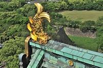 大阪府 大阪城の金の鯱