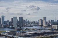 東京都 豊洲新市場の建設と晴海、豊洲周辺のビル群