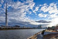 桜橋から見た東京スカイツリーと隅田川