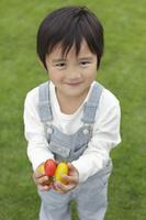 プチトマトを収穫した日本人の男の子