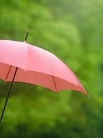 イメージ 雨の中の傘