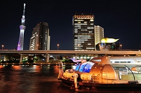 東京スカイツリー クリスマスライトアップ「冬雅」