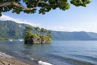 青森県 十和田湖の西湖湖畔と恵比寿大黒島