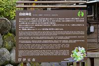 静岡県 修善寺温泉街 日枝神社