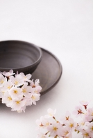 和食器と桜