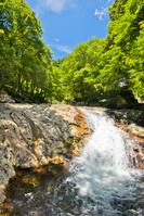 愛媛県 滑床渓谷