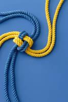 カラーロープ ブルー