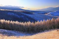 長野県 諏訪市 朝の霧ヶ峰