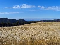 奈良県 ススキ原の曽爾高原