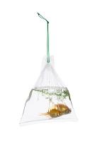 手提げ袋の金魚