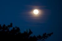 神奈川県 満月の宵