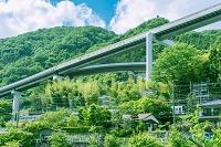 山間を走る高速道の橋梁と民家