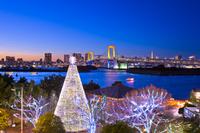 日本 東京都 お台場のクリスマスイルミネーション