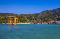 広島県 大鳥居と厳島神社