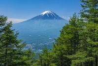山梨県 新道峠より富士山