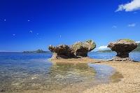 沖縄県 崎枝海岸 エリグロアジサシとキノコ岩と崎枝湾 石垣島