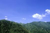 和歌山県 那智山風景林