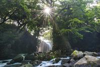 熊本県 南小国町 夫婦滝