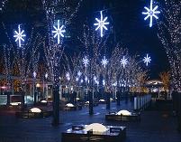 埼玉県 さいたま市 けや木広場