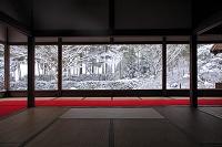 京都府 宝泉院 雪景色の額縁庭園
