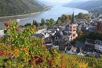 ドイツ ブドウ畑より俯瞰するバッハラッハの家並みとライン川