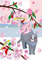 猫と花景4月