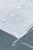 梅雨 雨に濡れたビニール傘