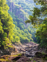 山口県 長門峡