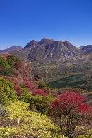 大分県 紅葉とくじゅう連山