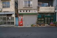 東京 鳩の街