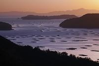 岡山県 カキ養殖筏が浮かぶ虫明湾の朝