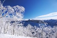 北海道 摩周湖の樹氷